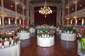 Expo-roses (8)